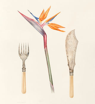 Strelitzia and serving knife and fork