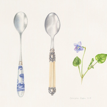 Two spoons and violet