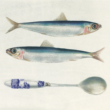 Two sardines and spoon