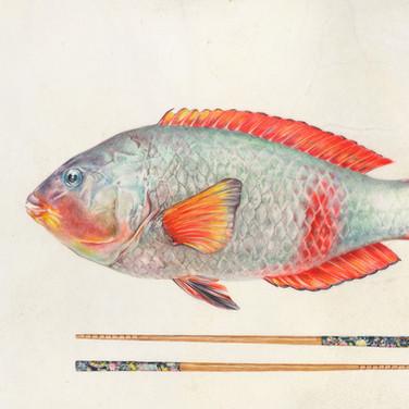 Parrotfish and chopsticks