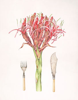 Gymea lily and fish servers