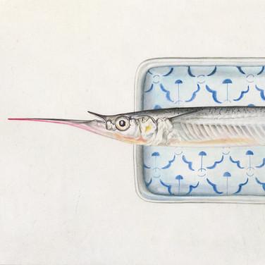 Garfish and plate