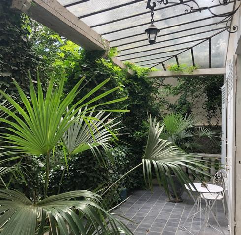Terrasse avec palmier principal.webp