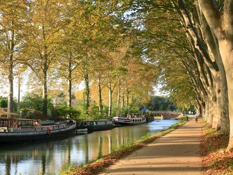 IMMOBILIER : Toulouse en première place du classement des villes françaises où il faut investir