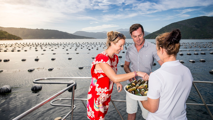 4. Seafood Odyssea Greenshell mussel far