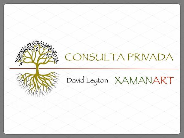 CONSULTA PRIVADA DAVID LEYTON_PES_202011