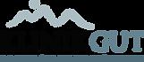 Logo-Klinik-Gut-300x131.png