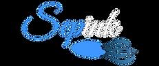 Logotipo OEPM TRas_edited.png