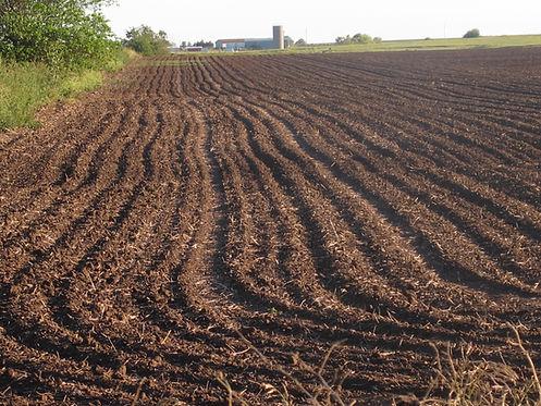 Kansas field, plowed