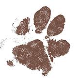 Dog Paw Print Peaceful Memory Keepsake