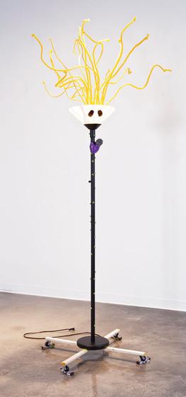 replacing-a-Light-Bulb-#1-(1).jpg