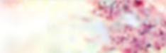 Screen Shot 2020-01-28 at 8.39.42 PM.png