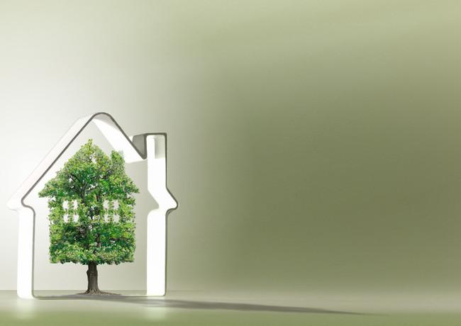 immobilier,écologie-1SR.jpg