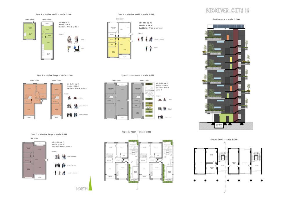 layout 3.jpg