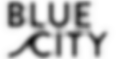 Blue City logo.png