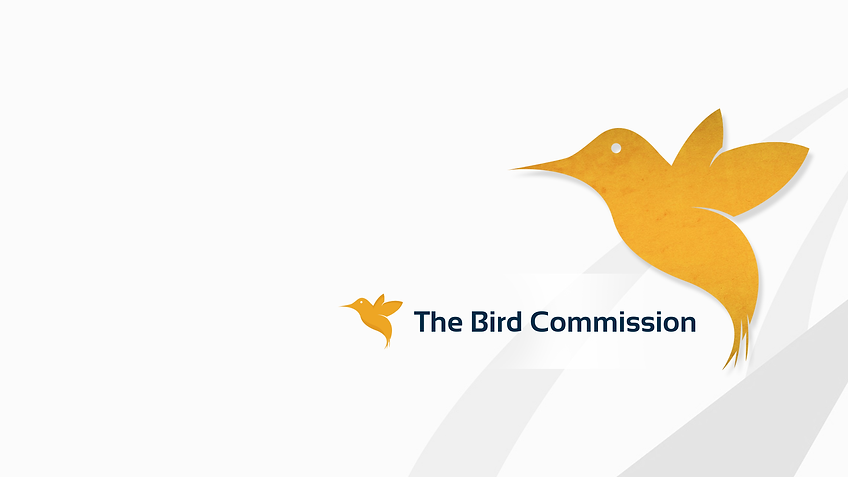 Bird Comm Logo Google-plus.png