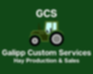 GCS sponsor 2.png