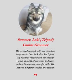 Summer Loki