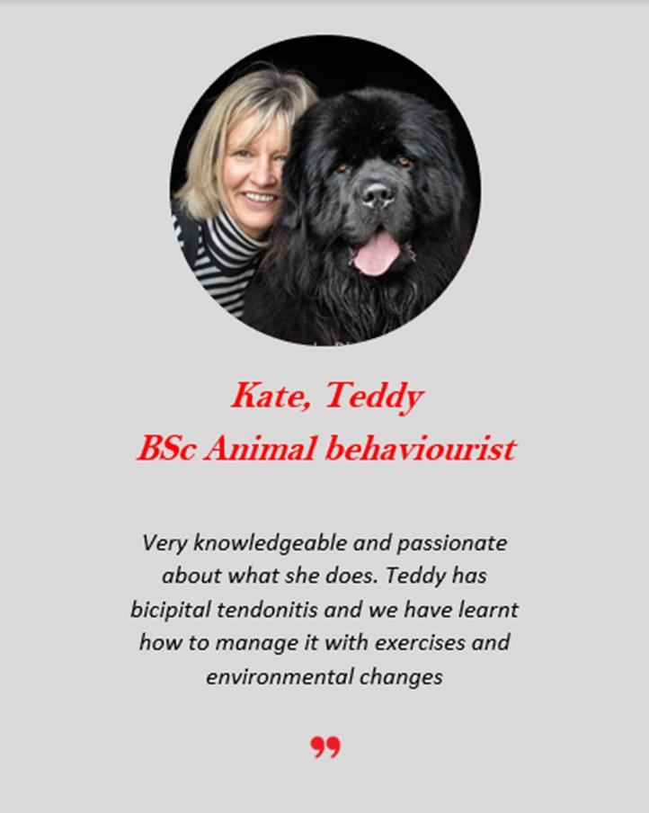 Kate Teddy