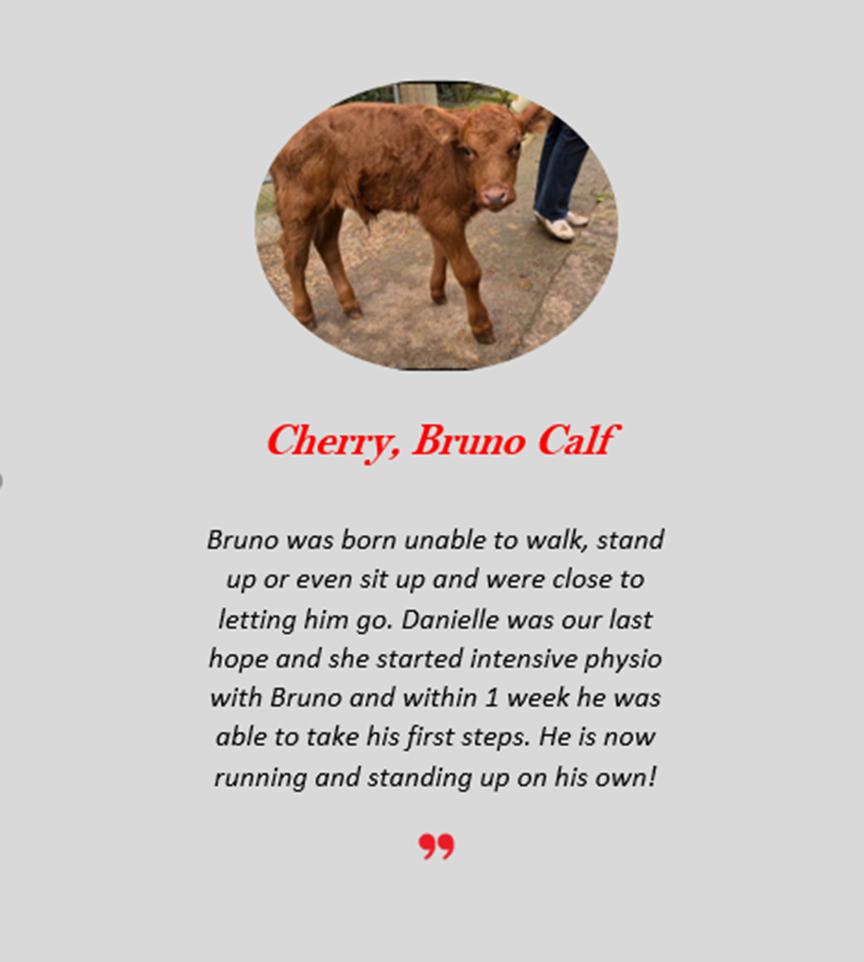 Cherry Bruno