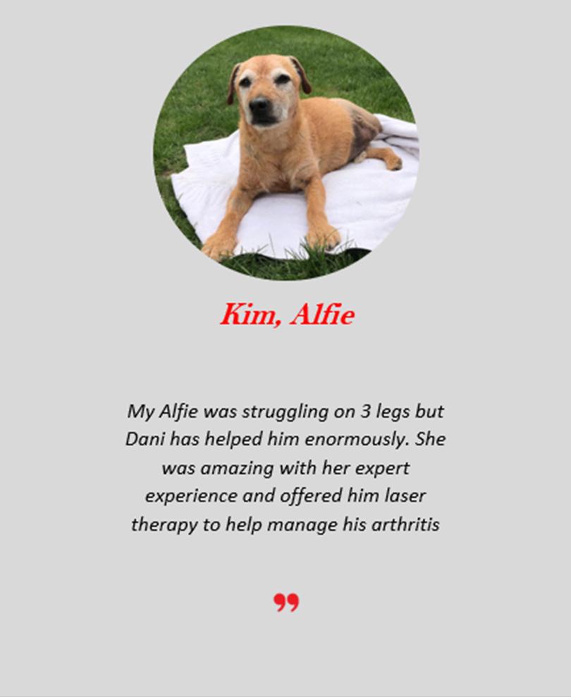 Kim Alfie.png