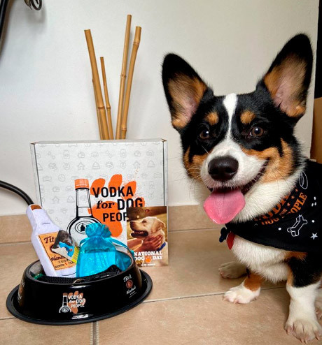 Tito's Vodka. Boo The Corgi.