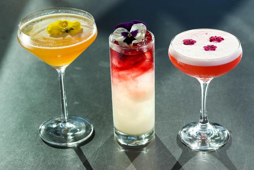 Cocteles Sparkling Desire, Night Fall y Rose Rose Rose. El Hotel Condado Ocean Club