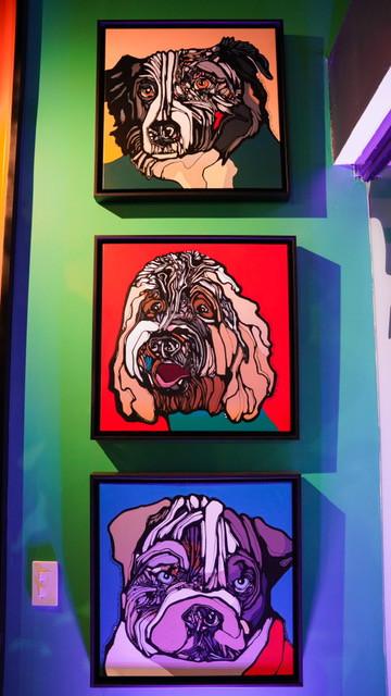 The Barking Lounge aterriza, Cupey.
