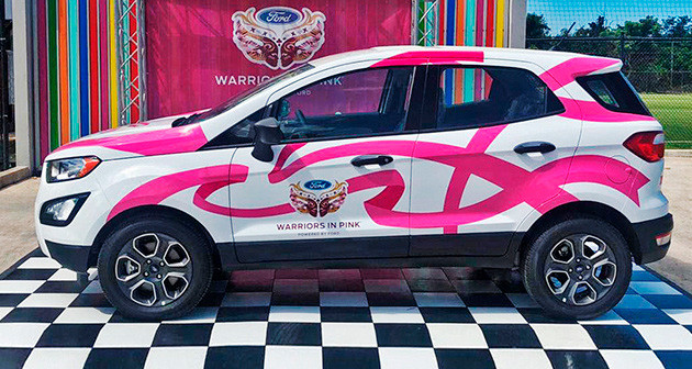 Ford, Warriors in Pink.
