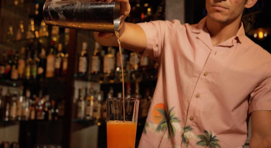 Midnight in Malibu, Bartender IN House