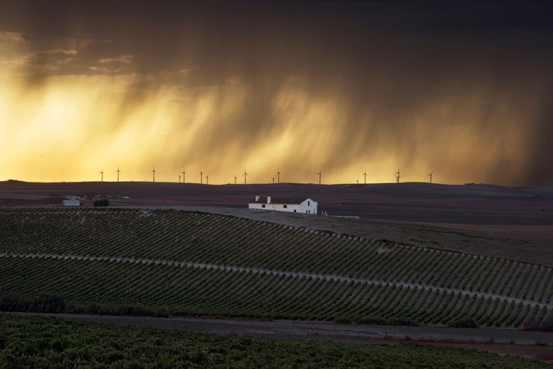 fotógrafo Steve McCurry, The Macallan.