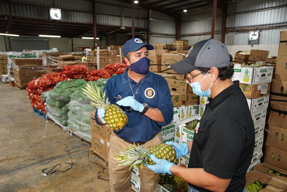 Caribbean Produce Exchange, Farmers to Families Food Box Program.