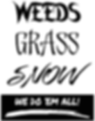 Weeds Grass Snow Vertical.png