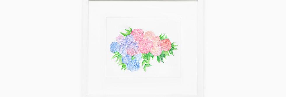 Hydrangeas Watercolor Print
