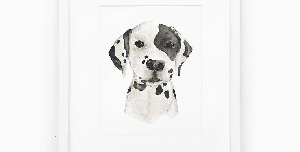 Dalmatian Pup Art Print