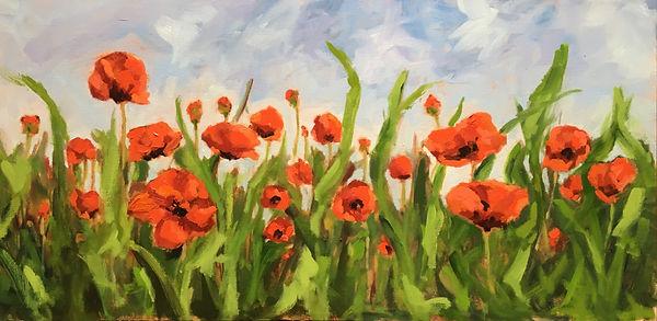 Poppies  15 x 30