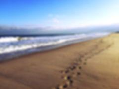 mindfulness walk image.jpg
