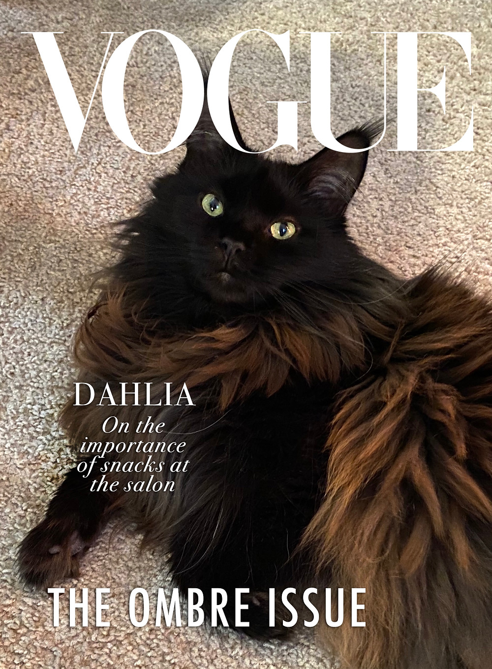 Vogue cover 2 Dahlia from Chicago Black Cat