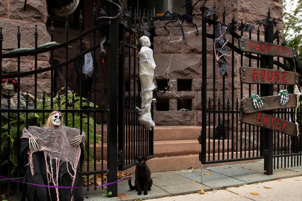 Mini Guard Panther Black Cat