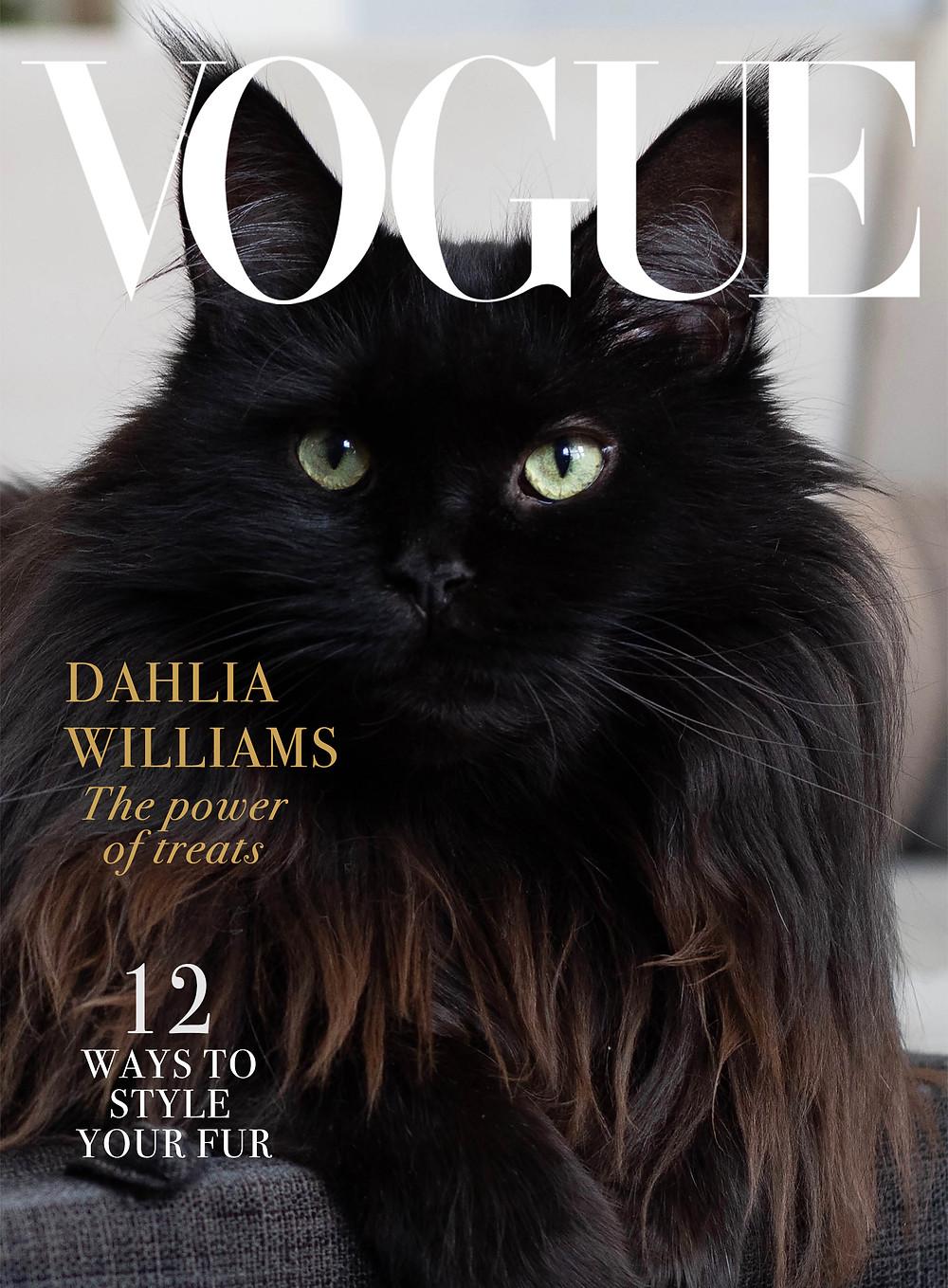 Dahlia from Chicago Black Cat Vogue cover 1