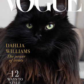 Maine Attraction: The Vogue Dahlia Retrospective