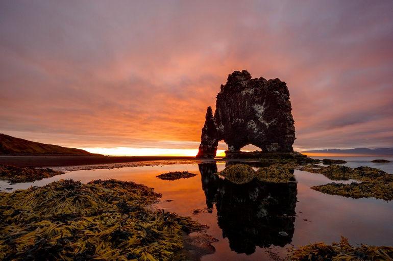 Хвитцеркур - скальное животное в Исландии