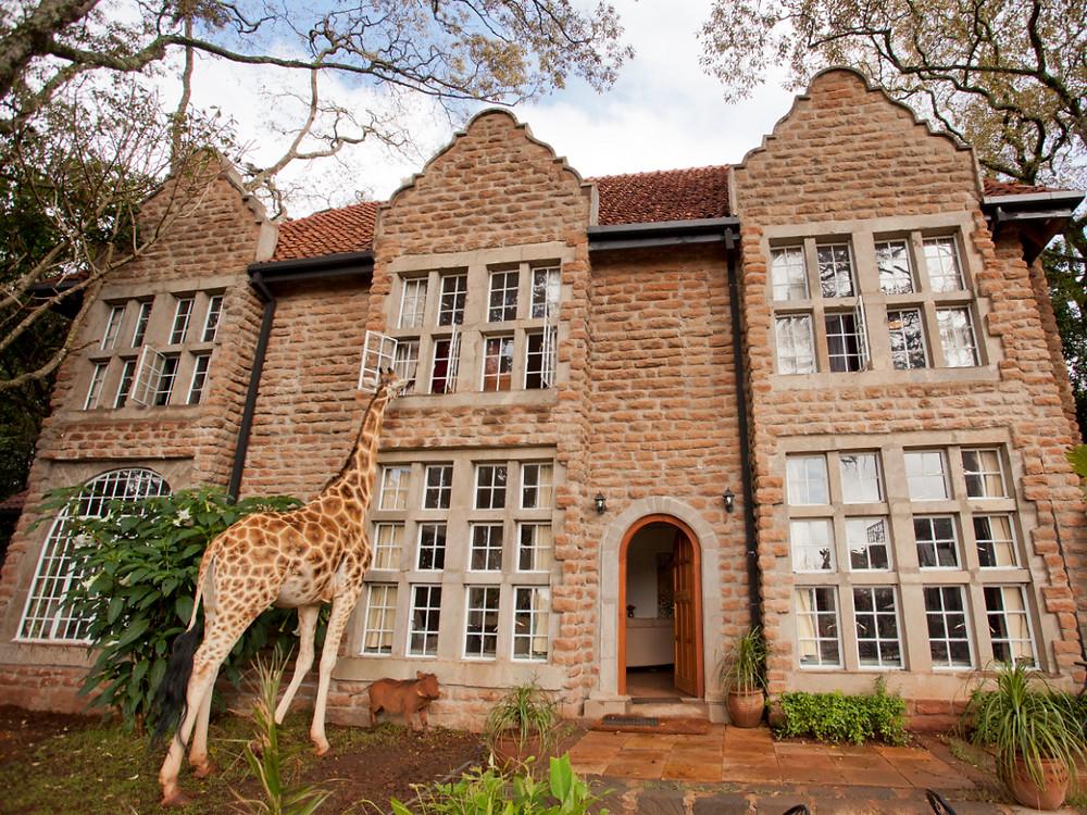 Giraffe Manor, Кения