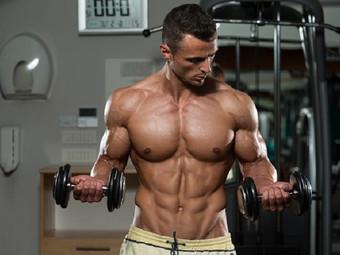 Как накачать мышцы на руках: 8 правил роста