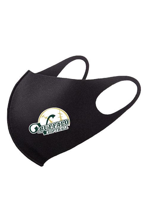 TVCS Softball Masks
