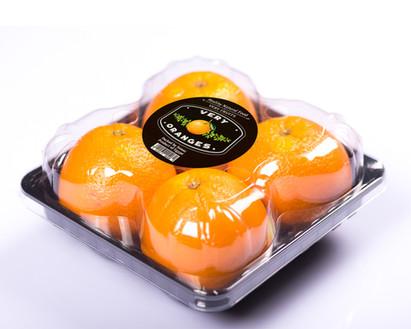 Very Oranges Quatro Pack for Navel Oranges, Valencia Oranges  & Tangerines