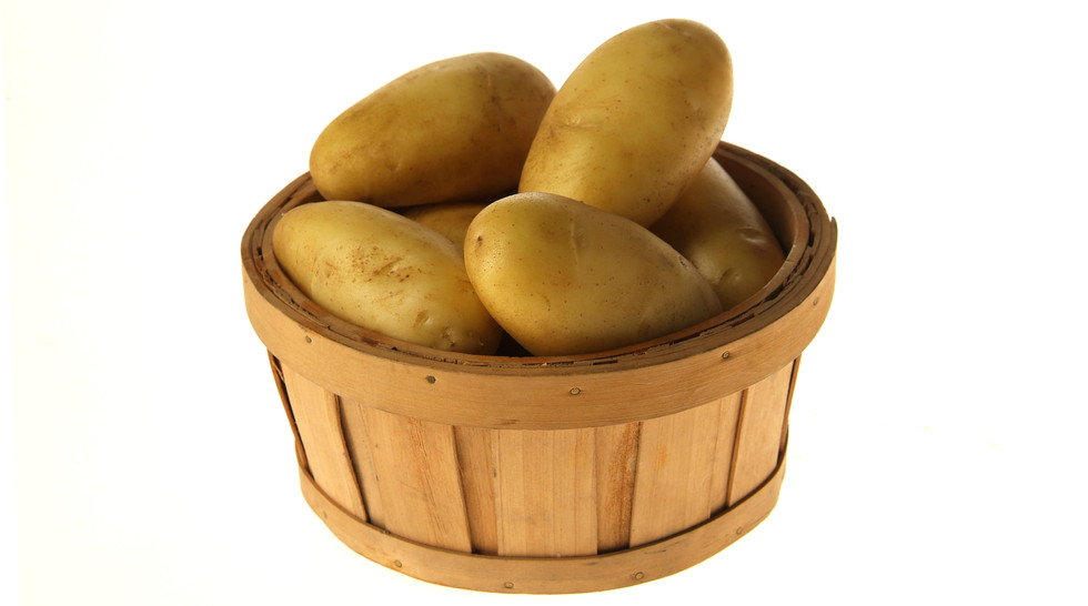 Potatoes for fries