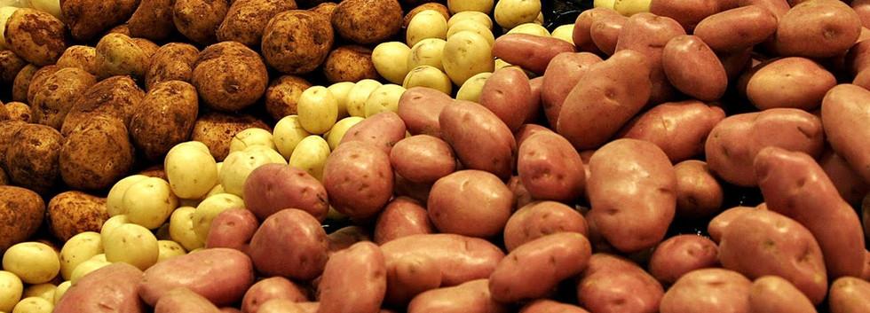 Potato Varities