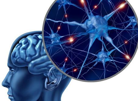 O que são NEUROTRANSMISSORES