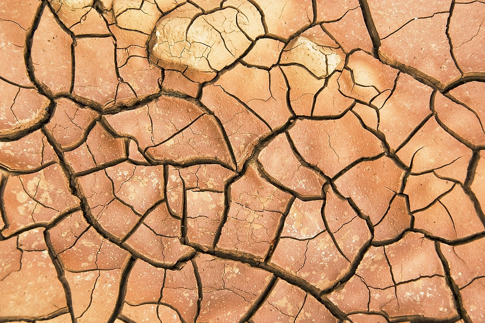Dry cracked earth background, clay deser